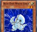 Blue-Eyes White Chick