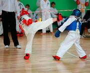 Taekwondo-kicks s600x600