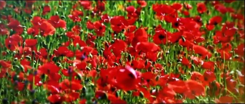 Abdülkadir Geylânî'nin ve İmam-ı Şazeli Hizbü'n-Nasr Duası Türkçe-0