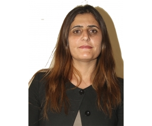 D.Taşdemir