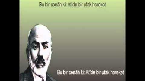 Âmin Alayı - Mehmet Akif Ersoy - Safahat