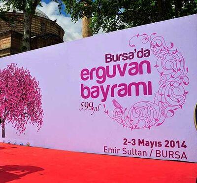 Bursada Erguvan Bayramı