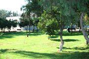 Kaymakamlık ön bahçe yeni hali