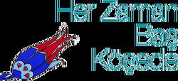 Bursa ulu şehir logosu 1