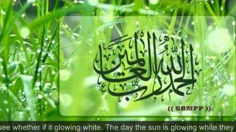 Ramadan Mubarak Special