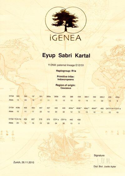 Haplogroup R1a (Y-DNA) | Yenişehir Wiki | FANDOM powered by Wikia