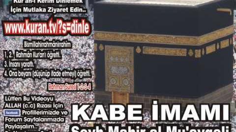 Alak Suresi - Kabe imamı Şeyh Mahir al-Mu'ayqali