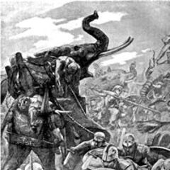 A Victorian depiction of war elephants attacking at the Battle of the Hydaspes River.