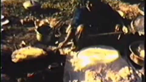 1978 Ghashghaie Tribe