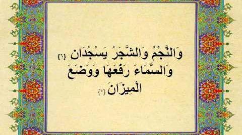 الشيخ مصطفى اسماعيل الرحمن تلاوة نادرة