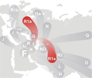 Haplogroup R1a (Y-DNA)