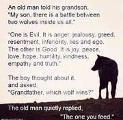İyi kurt kötü kurt kavga etti hangisi kazandı Bilge - Beslediğin