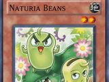 Naturia Beans
