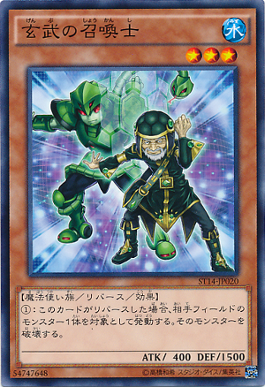 GreenTurtleSummoner