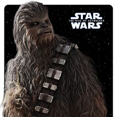 Chewbacca posteri