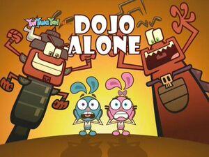 120b - Dojo Alone