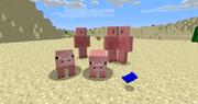 Pigmen