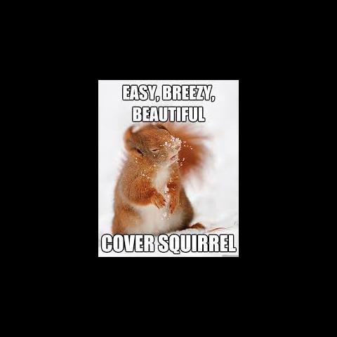 Squirrel's Yogscast forum avatar