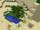 The Desert Oasis