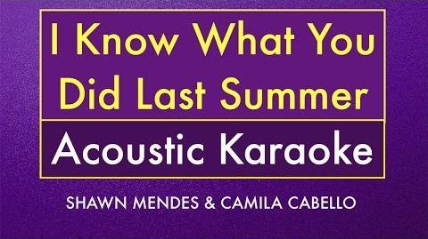 I Know What You Did Last Summer Karaoke Lyrics (Acoustic Guitar Instrumental)