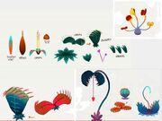 Plants-yogventures