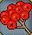 Trinket-Rowan berries