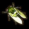 Grüne Zikade