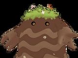 Elder Bloom