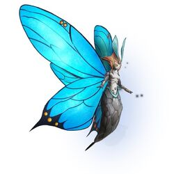 Farfalla