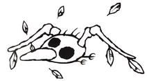 Skeleton Goonie Art