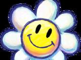 Flor Sonriente