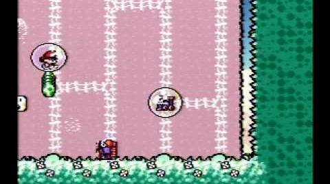 Yoshi's Island Speed Run 2-5 100% v2