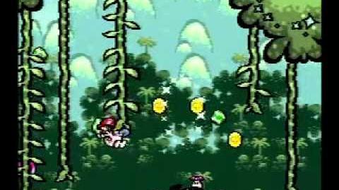 Yoshi's Island Speed Run 3-5 any%