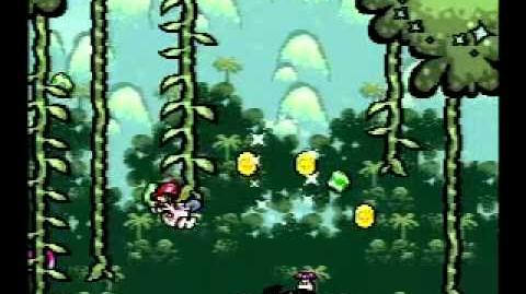 Yoshi's Island Speed Run 3-5 any%