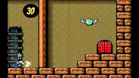 Yoshi's Island Speed Run 1-4 100%