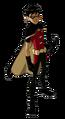 Robin model.png