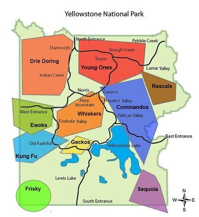 Yellowstone-National-Park-Wolf-Packs 3