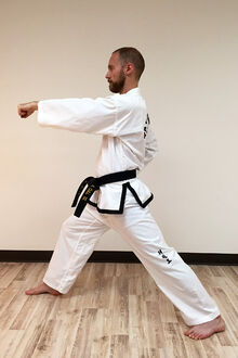 Taekwon-do-middle-punch-9