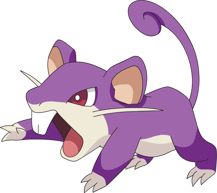 Crystal S Rattata Your Guide To Pokemon Wikia Fandom