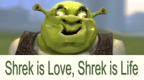 """Shrek is Love, Shrek is Life"""