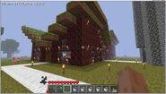 Minecraft40
