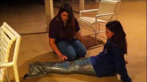 A Mermaid Tail season 1 episode 3