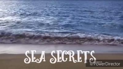 Sea Secrets 2
