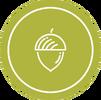 Acorn - TeamTrees