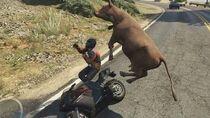 Grand Theft Auto V Spirit Animals - Part 3