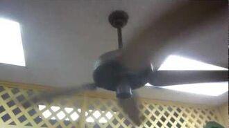 "52"" Hunter R&M Original ceiling fans (Reverseaire and standard)"
