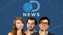 DNews Starts Today!