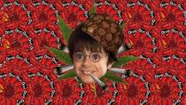 Harry Potter and the MLG Stoner MLG Harry Potter