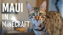 Maui In Minecraft