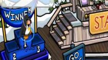 Club Penguin The contest